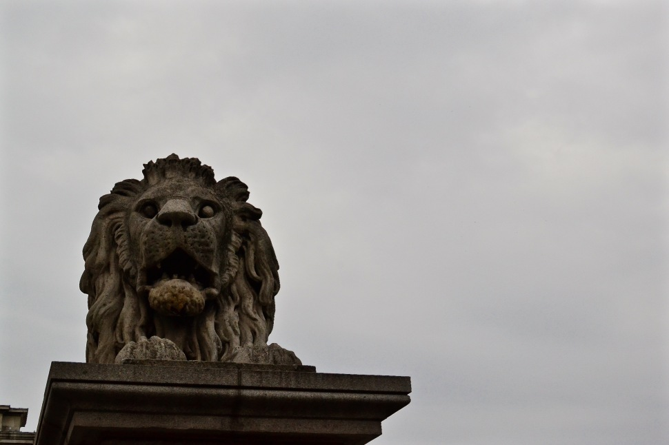 Bridge_Lion