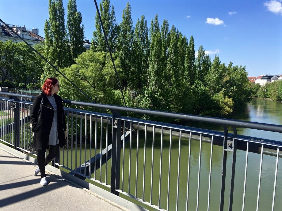 Danube_bridge_me