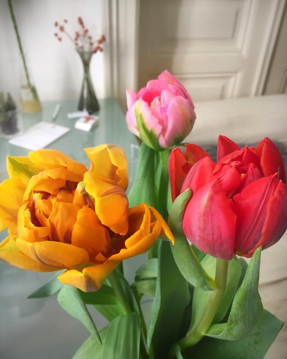 Flowers_birthday