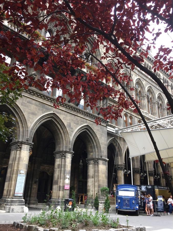 courtyard_tree