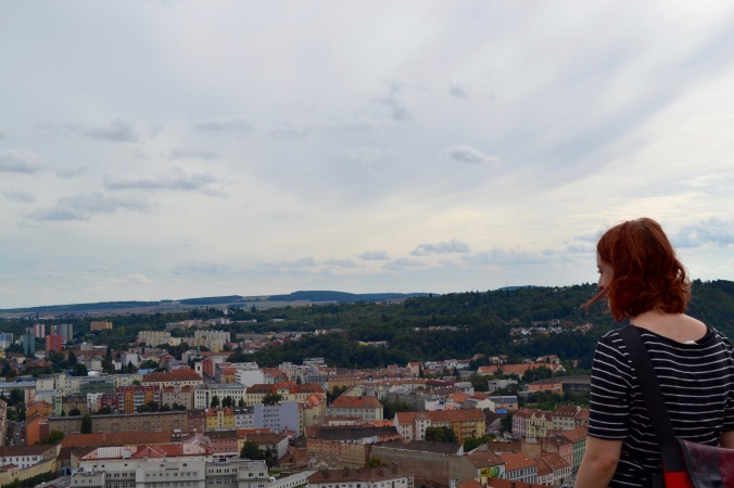 Brno_castle_view_me