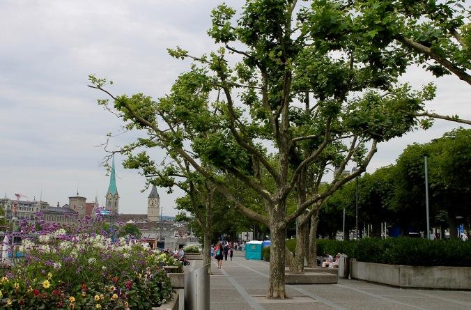 zürich_zürichsee_seepromenade