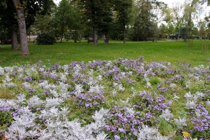 gorky-park_flowers
