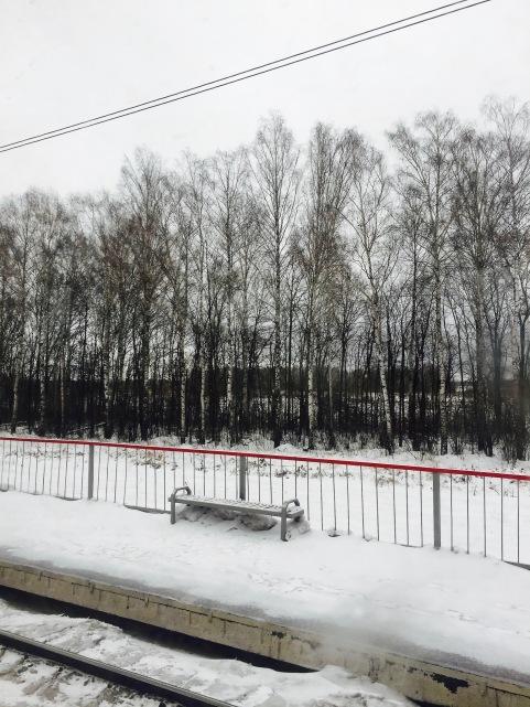 rostov_7708