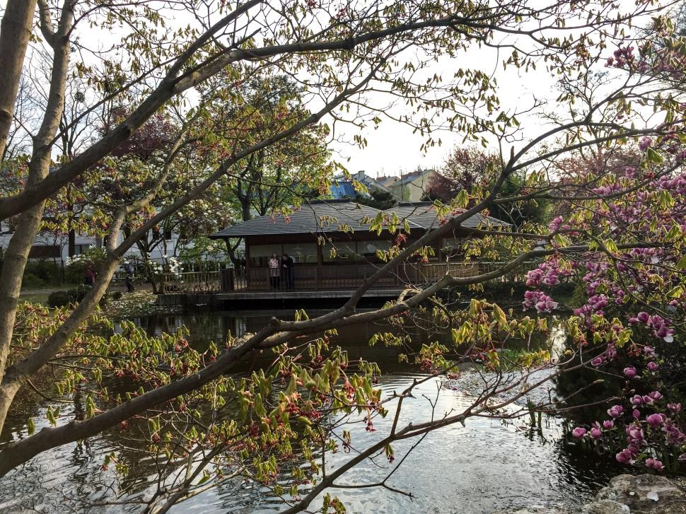 Setagayapark_vienna_house_3