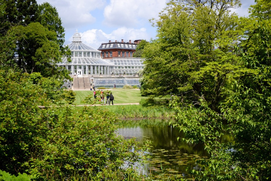Copenhagen_Botanical Garden_grounds