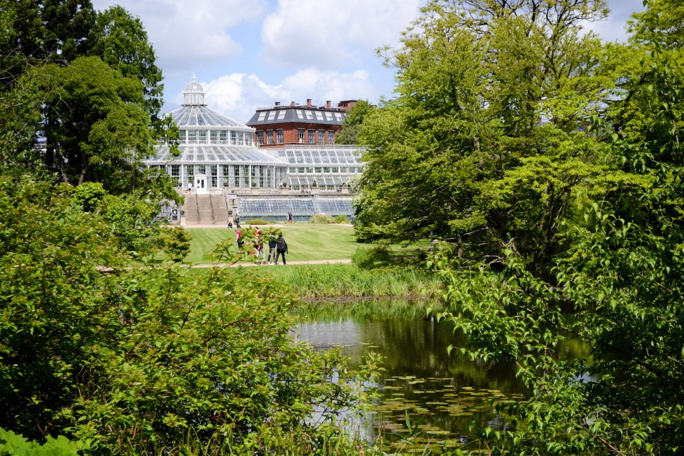Copenhagen-Botanical-Garden-grounds