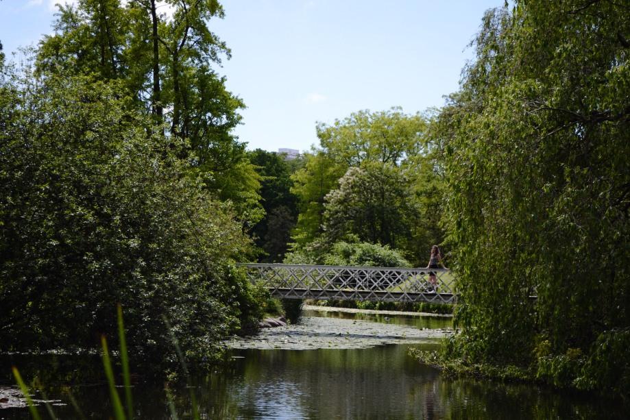 Copenhagen_Botanical Garden_pond_1