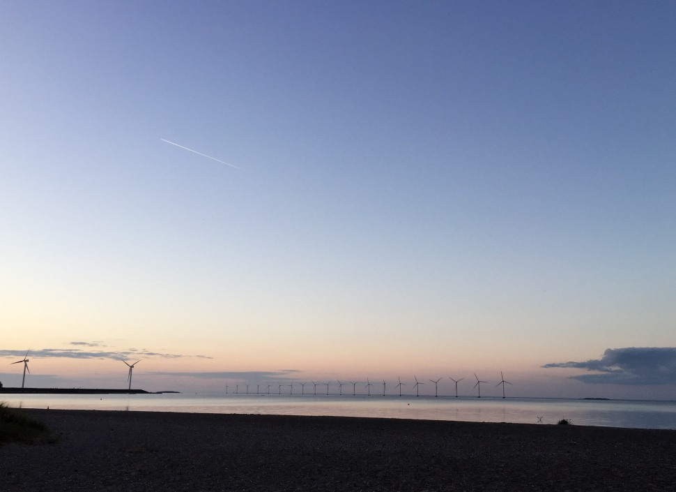 Amager Strandpark-11