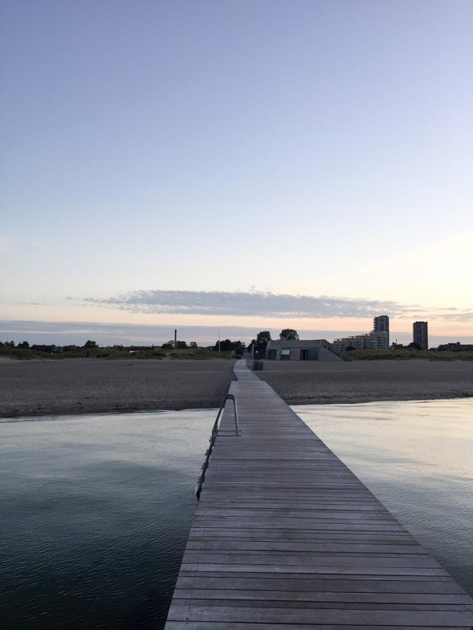 Amager Strandpark-22