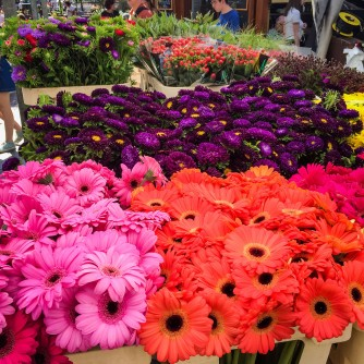 Amsterdam_market_flowers_