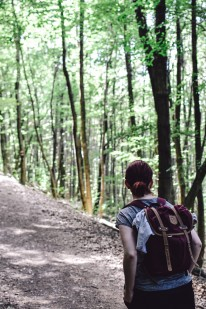 Vienna_hike_forest_christina