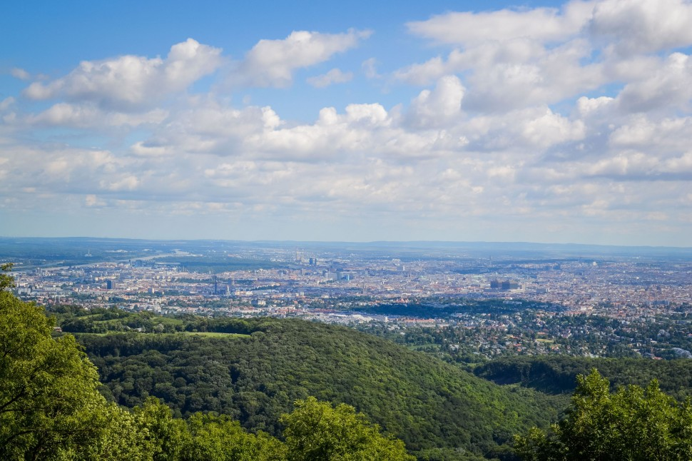 Vienna_hike_hermannskogel_view.jpg