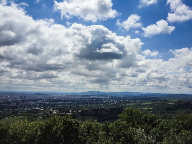 view from the Kahlenberg