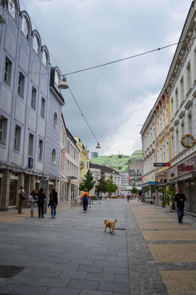 St Pölten_city_streets_empty_dog
