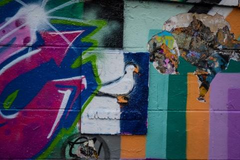 northernsunlight_wien_donaukanal-street-art_pigeon