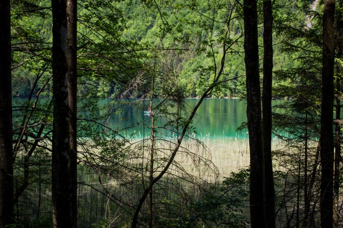 northernsunlight-lakes-hiking-langbathseen-trees